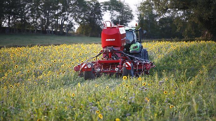 Semi direct sous couvert : de nombreuses techniques existent pour respecter la vie des sols
