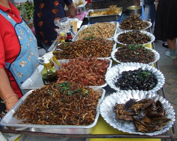 Stand de vente d'insectes comestibles en Thaïland