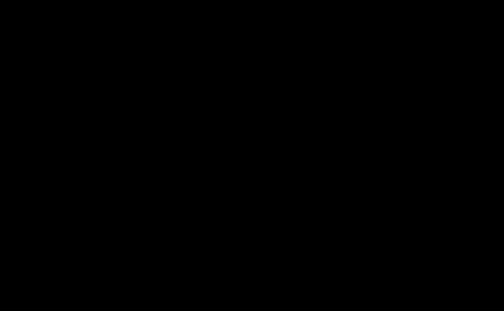 Variations dans les formes des mouchetures d'hermines