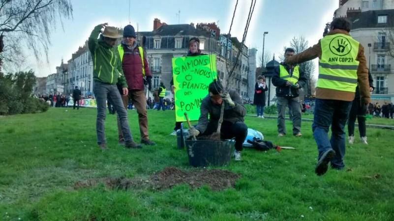 Vers Nantes, Gilets jaunes et écologistes plantent des pommiers sur les ronds-points.