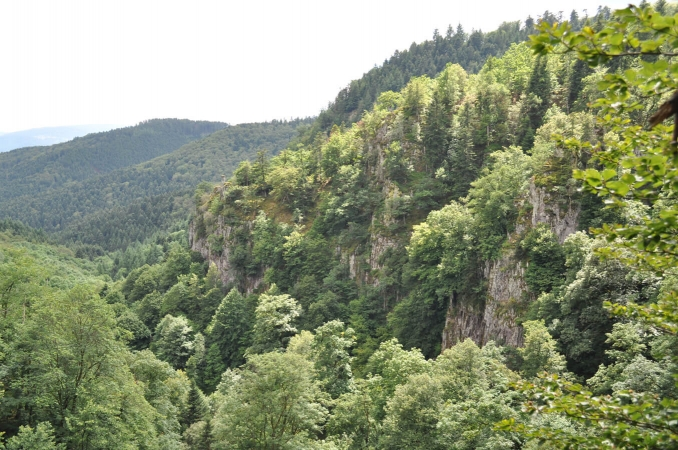Vue de la vallée du Nideck