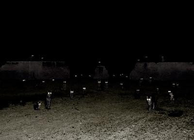 Yeux de chats en pleine nuit